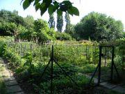 Αστικοί λαχανόκηποι του Πάρκου