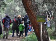 Guided visits in botanical garden