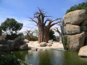 Το ομολογουμένως καλοφτειαγμένο με ατμόσφαιρα Αφρικής, Bioparc