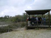 Ο υγρότοπος και η εξέδρα παρατήρησης πουλιών στο κέντρο ενημέρωσης των επισκεπτών Racó de L'Olla